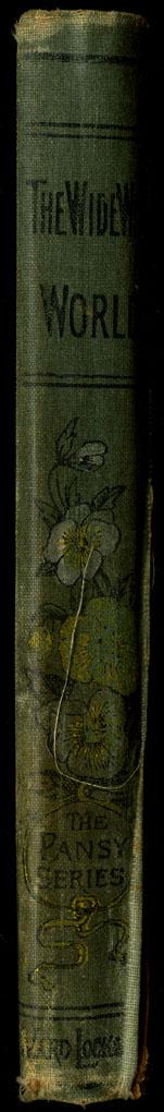 22UVA_Ward Lock_[1892]_Spine_web.jpg