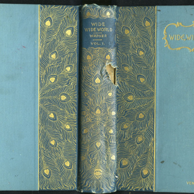 Full Cover of Volume One of the [1902] Home Book Co. Reprint