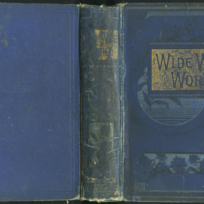 Full Cover of the [1890] Frederick Warne & Co. Reprint
