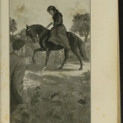 Illustration on Page 410a of the [1910] R.F. Fenno & Co. Reprint Depicting the Horse Whipping Scene