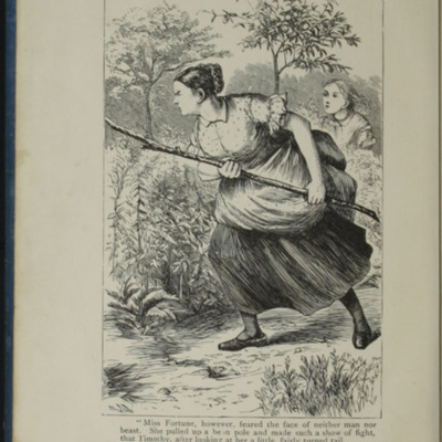 Frontispiece of the [1899] George Routledge & Sons, Ltd. Reprint, Depicting Aunt Fortune Chasing Timothy the Bull