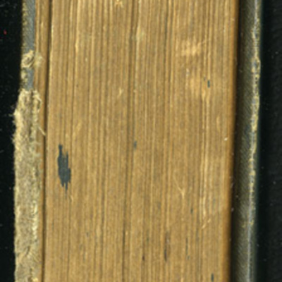 "Head of the [1894] William L. Allison Co. ""Allison's Standard Library"" Reprint"