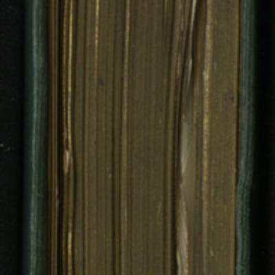 "Head of the [1893] Walter Scott, Ltd. ""Emerald Library"" Reprint"