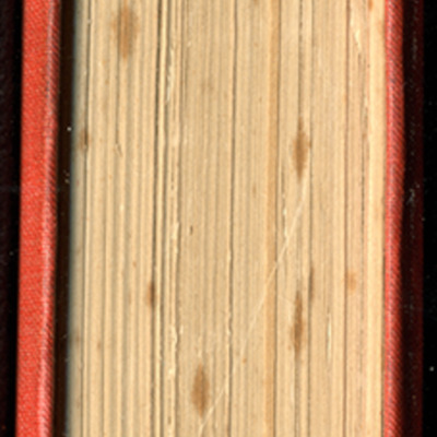 "Tail of the 1879 James Nisbet & Co. ""Golden Ladder Series"" Reprint"