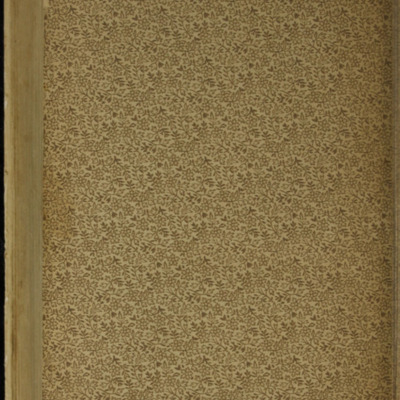 """Verso of Second Back Flyleaf of the [1895] William L. Allison Co. """"Allison's New Standard Library"""" Reprint"""