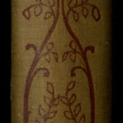 Spine of Volume Two of the [1895] Mershon Co. Reprint