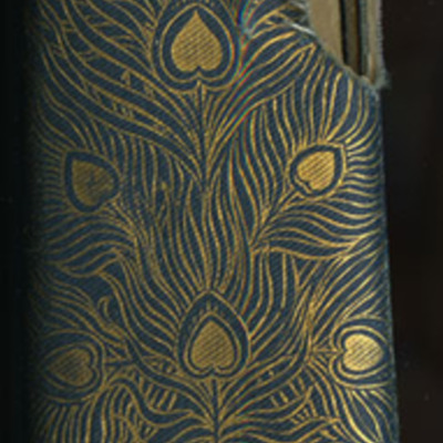 Spine of Volume 1 of the [1902] Home Book Co. Reprint, Version 3