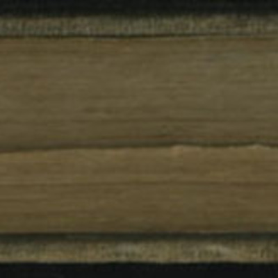 Fore Edge of Volume 2 of the 1851 George P. Putnam First Edition, Version 3