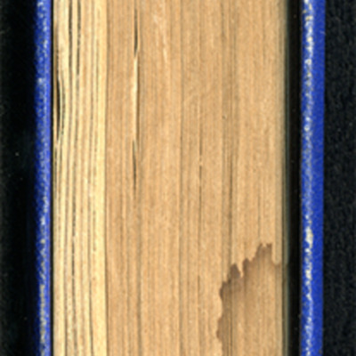Tail of the [1887] W. Nicholson & Sons Reprint, Version 2
