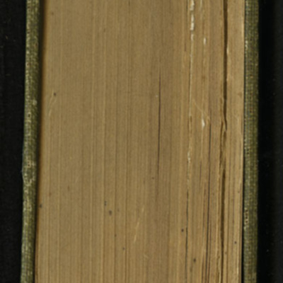 Head of the [1907] Grosset & Dunlap Reprint, Version 2