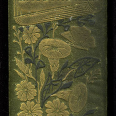 "Spine of the [1885] Ward, Lock & Co. ""Home Treasure Library, Complete Edition"" Reprint"